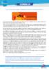 Violence_faites_aux_femmes - application/pdf